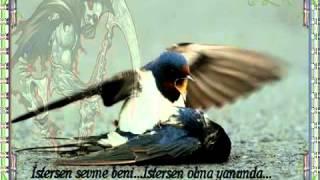 Download YUSUF HARPUTLU (ACIMADINMI) Video