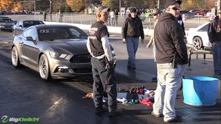 Download Surprisingly Quick EcoBoost Mustang Explodes Guts after Killing a GT Video