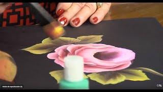 Download Anemonas Coloridas - Aprenda y Venda Video