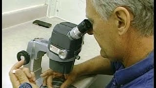 Download Embryo Transfer Rapidly Improves Dairy Genetics Video