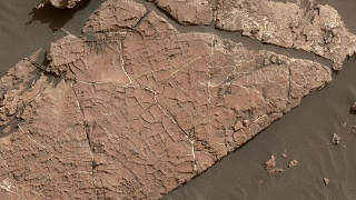 Download NASA may have found evidence of Mars mud cracks Video