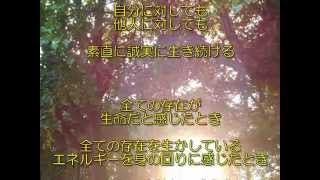 Download 《光満ちる森》(《生命の森》11)″lightsome forest″ Video