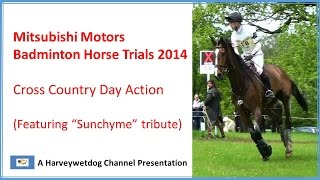 Download Badminton Horse Trials 2014: 4 Star Cross Country Highlights Video