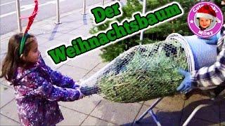 Download Wir kaufen Weihnachtsbaum und Schmuck ein - follow me around shopping Video