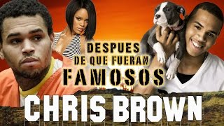 Download CHRIS BROW - Después De Que Fueran Famosos - RIHANNA Video