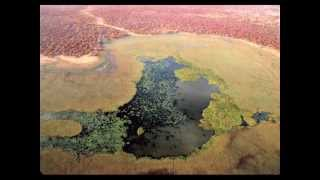 Download Zakouma National Park: a photographic experience Video