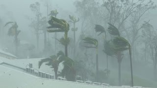 Download Extreme Wind, Flying Debris, Wrecked Boats - Cyclone Debbie 4K Stock Footage Reel Video