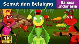 Download Semut dan Belalang | Dongeng anak | Kartun anak | Dongeng Bahasa Indonesia Video