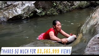 Download Survival skills: Catch big fish 5 Kg by hand in waterfall - Cooking big fish eating delicious #20 Video