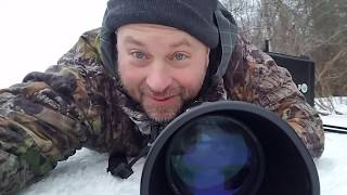 Download Wildlife Photography Pro Tips #1-Winter Wildlife! Video