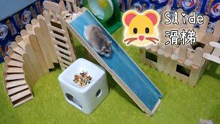 Download 【DIY Guide】Large Playground Slide :3 大型倉鼠滑梯 兩隻滑鼠盡情在樂園中遊玩吧! Video