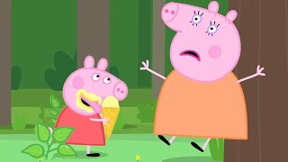 Download Peppa Pig Official Channel | Peppa Pig Visits The Mystery Fountain Video