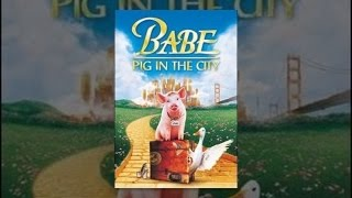 Download Babe: Pig in the City Video