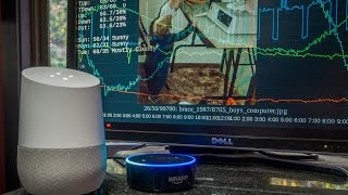 Download Alexa in a Forest -vs- Google in a Home Video