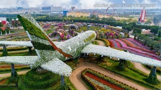 Download Dubai Miracle Garden 2019 Video