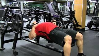 Download Hammer Strength Flat Bench Press Video