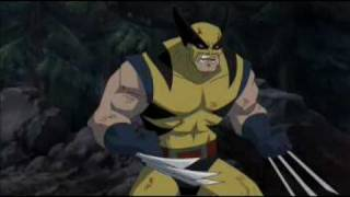 Download Wolverine vs Hulk Director's Cut Bloody Version Video
