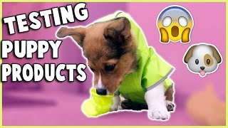 Download TRYING PUPPY PRODUCTS WITH MY CORGI PUPPY Video