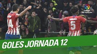 Download Todos los goles de la Jornada 12 de LaLiga Santander 2018/2019 Video