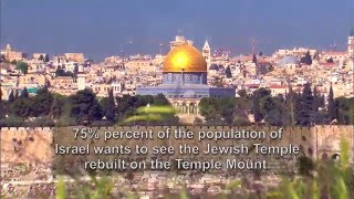 Download The Future of Israel and the Temple Mount Video