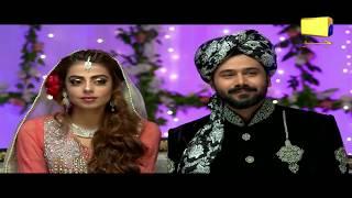 Download Ghar Titli Ka Par Episode 13 Best Moments 01 | Har Pal Geo Video