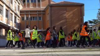 Download Flash mob ″Giornata nazionale sulla Sicurezza nelle scuole″ Video