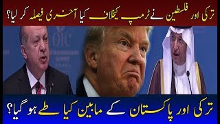 Download What Steps Taken By Phalistine & Turkey For Donald Trump? | Neo News Video