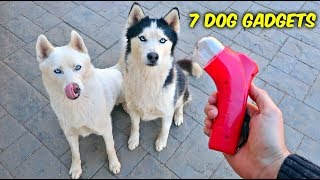 Download 7 Dog Gadgets Put to the Test - Part 6 Video