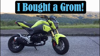 Download I Bought a Grom! | Smoky Mountain Crawl Video