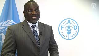 Download Remarks by Ousmane Badiane, Director for Africa, IFPRI Video