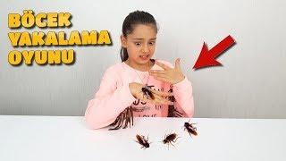 Download Böcek Yakalamaya Çalıştık En Çok Yakalayan Kazanır | Bay Böcek Firarda Video