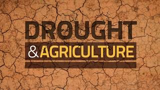 Download Drought and Agriculture - Predict, Plan and Prepare: Stop Drought Becoming Famine Video