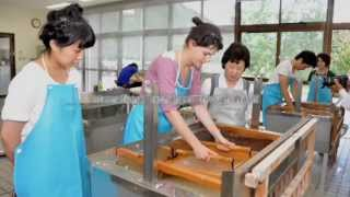 Download Washi, craftsmanship of traditional Japanese hand-made paper Video