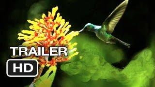 Download Disneynature: Wings of Life Official US DVD Release Trailer #1 - Meryl Streep Movie HD Video