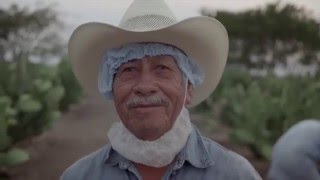 Download The Farms of Nutrilite Video