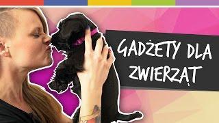 Download SPRYTNE BABKI - Gadżety dla zwierząt [odc. 9] Video
