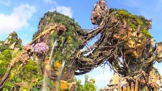 Download Day walk through Pandora - The World of Avatar - Valley of Mo'ara daytime tour, Walt Disney World Video