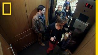 Download Elevator of Shame | Crowd Control Video
