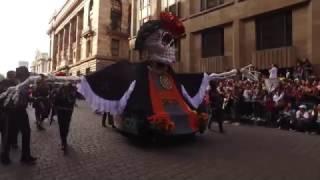 Download Magno desfile del día de muertos Video