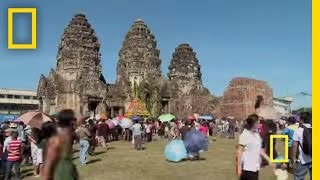 Download Lopburi Monkey Festival | National Geographic Video
