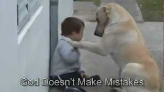 Download Sweet Mama Dog Interacting with a Beautiful Child with Down Syndrome. From Jim Stenson. Video