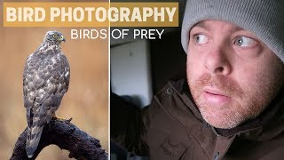 Download BIRD PHOTOGRAPHY | back to photograph birds of prey Video
