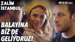 Download Çifte Balayı💘 Cemre ve Cenk'e Büyük Şok! | Zalim İstanbul 21. Bölüm Video