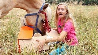 Download Mijn paard NEEMT de Epplejeck Unboxing OVER! + WINACTIE Video