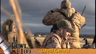 Download Quebec Canada Hunt with Fred Zink - TFL s1e11 Video