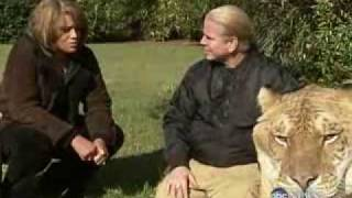 Download ABC Nightline - Featuring Hercules the Liger Video