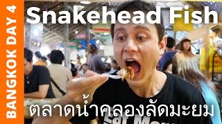 Download Snakehead Fish at Khlong Lat Mayom Floating Market - Bangkok Day 4 Video