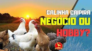 Download QUER GANHAR DINHEIRO COM GALINHA CAIPIRA? VAMOS ENTENDER DO NEGÓCIO Video