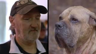 Download Tierische Armut   Unter deutschen Dächern   Folge 2 Video