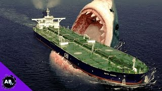 Download TOP 5 CRAZIEST SHARKS ALIVE! 5 Weird Animal Facts Video
